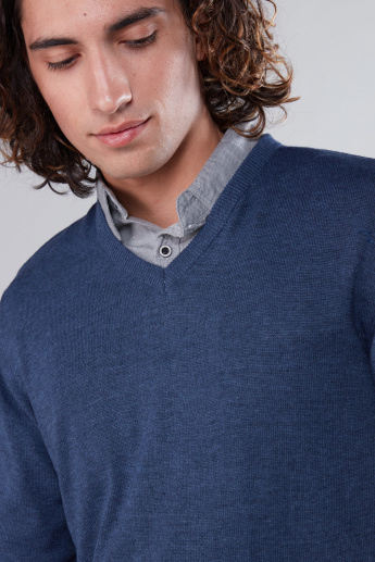 Long Sleeves Sweater with V-Neck