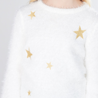 Embroidered Round Neck Long Sleeves Sweater